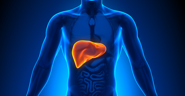 What is Hepatic Clearance?