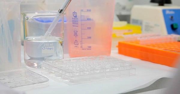 In Vivo vs In Vitro: Differences in Early Drug Discovery